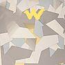Wildcraft WC 5 Broken Camo